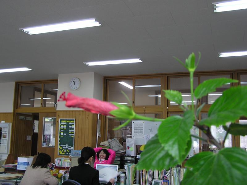 Teachers_room_2
